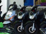 roadrunner3